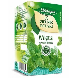 Herbata mięta 20 SZT