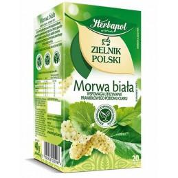 Herbata Morwa Biała 20szt